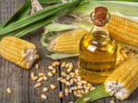 Aus anderem Blickwinkel – Maiskeimöl