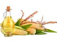Tolerantes Öl – 10 wichtige Tatsachen über das Maiskeimöl